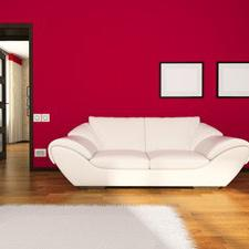 Why You Should Hire an Interior Painter